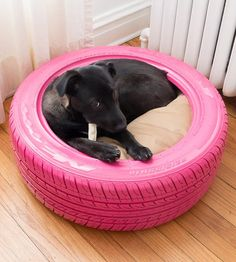 The most time-consuming part of this DIY was waiting for the pink paint to dry (seriously). Stuff a pillow inside for your pup to cozy up against, then toss it in the washer and hose down the tire to clean — just make sure your dog isn't using it Reuse Old Tires, Diy Dog Bed, Dog Rooms, Training Your Puppy, Training Dogs, Pet Beds, Dog Behavior, Diy Stuffed Animals, Dog Care