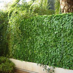 Haie végétale artificielle feuilles lierres (H 1.5 m) : en vente chez mes-meubles-jardin.fr