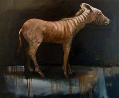 the last quagga oil on canvas 50 x 60 cm from the 'stillness' series www.niebuhr.co.za Oil On Canvas, Paintings, Horses, Animals, Animales, Paint, Animaux, Painted Canvas, Painting Art