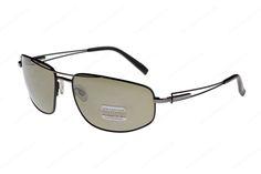 197784c4a3e5 Купить солнцезащитные очки Serengeti AUGUSTO 7225 в интернет-магазине
