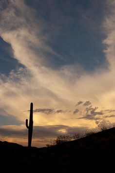 Saguarao - Sunset: As you can see here, Ahwatukee and the metro-Phoenix area experiences gorgeous sunsets as the sun sets between the ominous clouds.