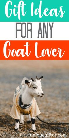 7c13cf14 21 Fascinating Goat Gifts images | Goat gifts, Goat, Goats