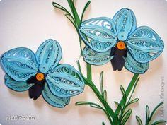 Картина, панно Квиллинг: Квиллинг: Выставка орхидей =) Бумажные полосы. Фото 2