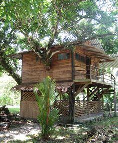 Casa con árbol de mango