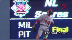 Bryce Harper runs into the wall | MLB | Washington Nationals - http://www.sportsgameupdate.com/bryce-harper-runs-into-the-wall-mlb-washington-nationals/