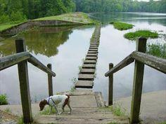 Hematite Lake Trail - Land Between the Lakes, Kentucky - Hiking and walking trailheads on Waymarking.com