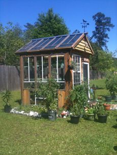 I have a greenhouse to grow my own vegetables, herbs and spices..