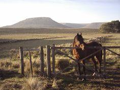 El campo y las sierras, lugar especial para el turismo en espacios rurales.