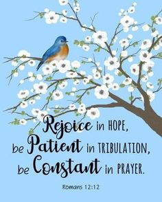 Blue Bird Quotes Inspirational 67 Ideas For 2019 Bible Verses Quotes, Jesus Quotes, Bible Scriptures, Healing Scriptures, Healing Quotes, Romans Bible Verse, Calligraphy Quotes Scriptures, Humility Quotes, Bible Verse Pictures
