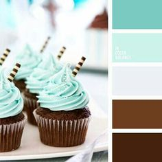 Brown and blue color palette   chocolate cupcakes with blue icing   color scheme  color inspiration