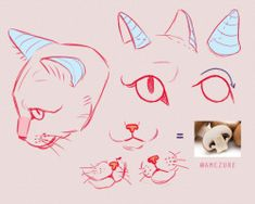 Animal Sketches, Animal Drawings, Art Sketches, Art Drawings, Drawing Animals, Art Reference Poses, Drawing Reference, Cat Reference, Warrior Cat Drawings