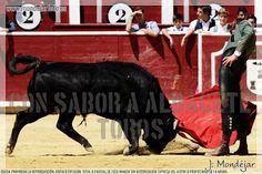 PSOE Y PP TUMBAN LA PROPUESTA DE GANEMOS DE RETIRAR LA SUBVENCION A LA ESCUELA TAURINA  Albacete Escuela Taurina de Albacete Noticias Toros