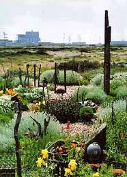 The late film maker Derek Jarman's seaside  garden. It is still looked after, and still beautiful. We visit sometimes to glimpse it. I adore the 3d text which an old friend of mine helped him put down one wall of his house .... simply stunning.