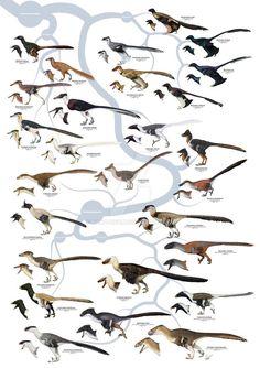 La familia dromaeosauridae
