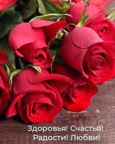Happy Birthday Flower, Happy Birthday Greetings, Good Morning Photos, Good Morning Messages, Morning Quotes, Cute Baby Wallpaper, Good Night Sweet Dreams, Valentine Special, Beautiful Roses