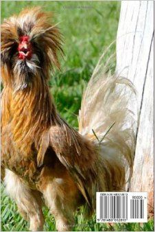 1000+ images about Farm Fun on Pinterest Chicken coops