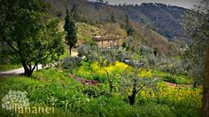 I colori della natura - The colours of nature
