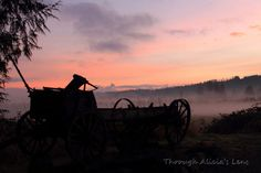 "Valley Sunset Behind Old Wagon in Duvall Washington, Snoqualmie Valley, ""Somewhere Between Past and Present"" by Through Alicias Lens on Etsy"