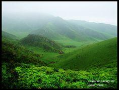 Lomas de Lachay...Km. 105 Panamericana Norte - Chancay Lima Perú