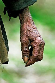 hand tells a thousand stories