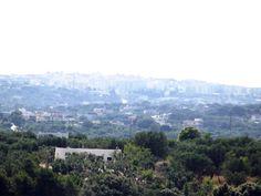 The landscape with Ostuni's view