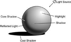 tonal progression in shading - just reference and this is one of the better examples that shows the reflected light