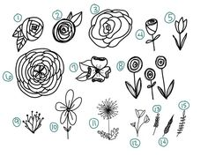 video showing you how to draw 15 different flowers AND a printable practice sheet! Tulip Drawing, Vine Drawing, Plant Drawing, Drawing Step, Zine, Dandelion Drawing, Different Kinds Of Flowers, Simple Flowers To Draw, White Flowers
