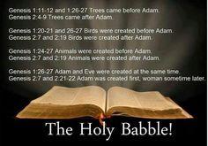 Bible contradictions #genesis #adam #eve