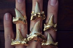 Shark Tooth Rings  #SharkTooth  #Rings  #Gold  #Jewelry  #Kamisco