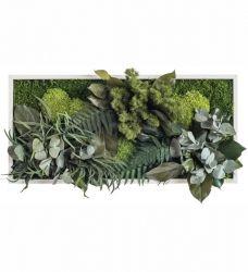 Pflanzenbild 57 x 27cm