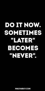 "#inspiration #quote / DO IT NOW. SOMETIMES ""LATER""  BECOMES ""NEVER""."