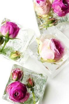 Blumen-Eiswürfel
