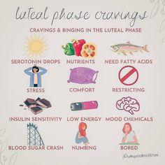 Ayurveda, Hormone Balancing, Menstrual Cycle, Food Cravings, Health And Wellness, Moon Mandala, Stress, Natural, Nutrition