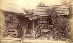 blount county tn: Cochran, William Cox 1848-1936; Bly's cabin Mt. Nebo Blount Co. Tenn. (William Cox Cochran Great Smoky Mountains Photographic Collection)