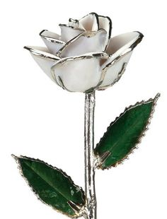 Snow White Laquered Platinum Dipped Long Stem Genuine Rose In Red Gift Box Living Gold http://www.amazon.com/dp/B00FP57IYG/ref=cm_sw_r_pi_dp_r.W1wb0T7TJ0J
