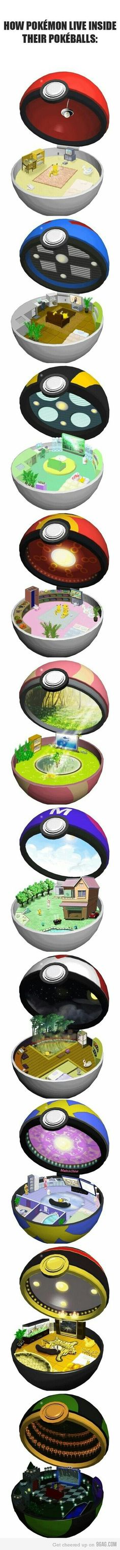 How Pokemon live inside a Pokeball