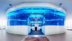 HK$11.66 million: the ultimate aquarium   South China Morning Post