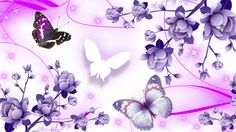 Pink and Purple Butterfly   Abstract hdwallpaper joy Of Pink Purples