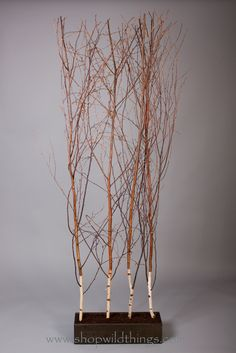 These wonderful birch room dividers are absolutely awesome for your natural event or for home decor. Leave them completely plain or add floral, strands of beads, and more to the branches. The branches What a fun thing to do