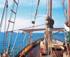 Sail, Snorkel, Kayak, Explore - Whitsundays Sailing Adventures