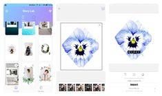 Дизайн Инстаграм: 17 проверенных инструментов + примеры - Rusability Story Lab, Internet Marketing, Gallery Wall, Instagram, Facts, Online Marketing, Knowledge