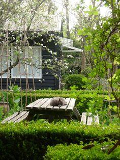 En el jardin