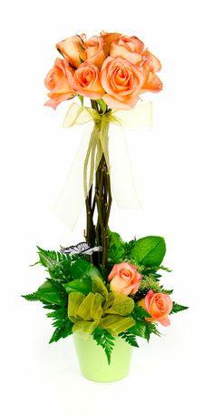peach topiary | Topiary Roses. Topiary Roses In A Vase. Roses In A Topiary Form. Peach ...