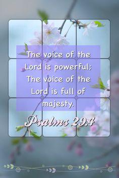 Psalms 29:4