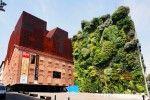 Patrick Blanc's Lush Vertical Garden
