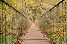 Otoño  a tope en las #fragasdoeume . . . #Galicia #otoño #autumn #nature #naturaleza