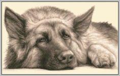 GERMAN SHEPHERD ALSATIAN dog counted cross stitch kit
