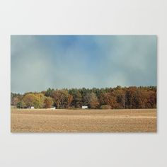 """#Fine #art print on bright white, fine poly-cotton blend, matte #canvas using latest generation Epson archival inks. Individually trimmed and hand stretched museum wrap over 1-1/2"""" deep wood stretcher bars. Includes wall hanging hardware. #After the #Harvest @society6 #society6"""