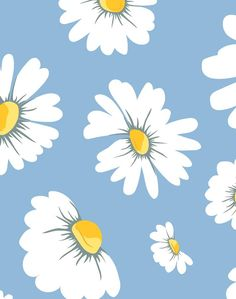 Daisy Bloom Wallpaper - Removable / Panel / Baby Blue