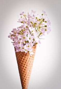 #icecream handmade artisan ice cream in munich germany image copyright goldammer studio www.trueand12.com